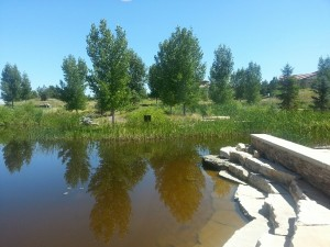 Parks in Highlands Ranch Colorado