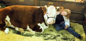 Stock Show Facebook Page