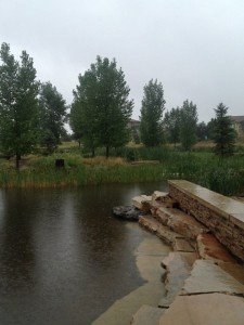 July Rainstorm BackCountry Highlands Ranch Colorado