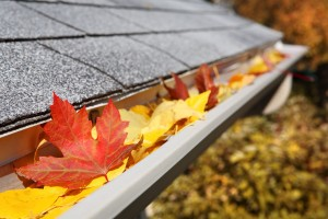 Clear out rain gutters for winter